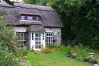 Cottage: pet sitting and dog walking services st albans