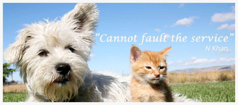 Slide-4-Dog+Cat